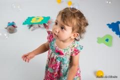 photographe de bébés ivry la bataille