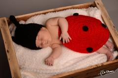 photographe naissance Serez